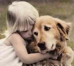 любовь к собаке