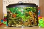 аквариум 555